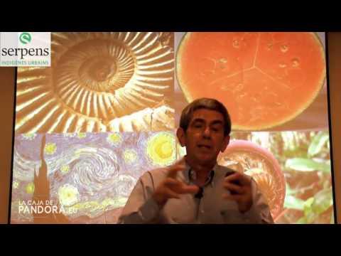 Dr  Karmelo Bizkarra  Nutrición energética   Nutrición celular PARTE 2 720p