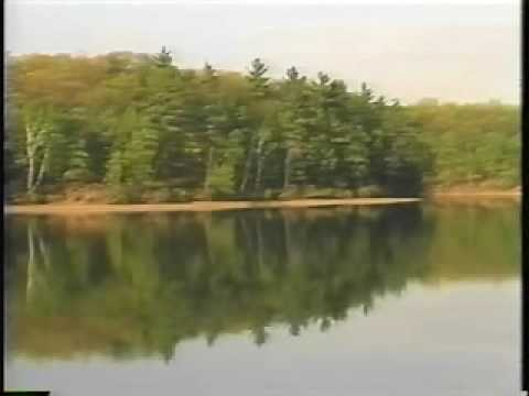 уолденский пруд фото