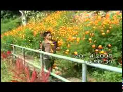 Moro song Nuget Ko den seka da Mailay By Al-ansar Band