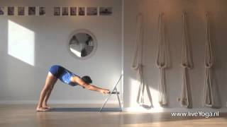Iyengar yoga practice - Using a chair in dog poses practice
