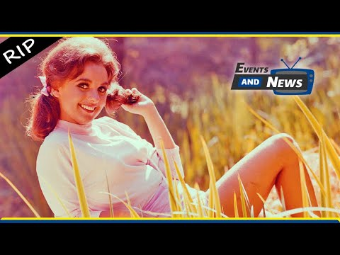 Download Dawn Wells, Mary Ann on Gilligan Island, dies at the age of 82 from COVID 19 complications
