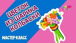 """Как сделать цветок из воздушных шаров своими руками? Видео мастер-класс """"Цветок из ШДМ"""""""