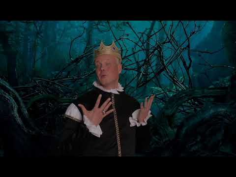 2017 Raleigh Chamber of Commerce Campaign Kickoff: Into The Woods