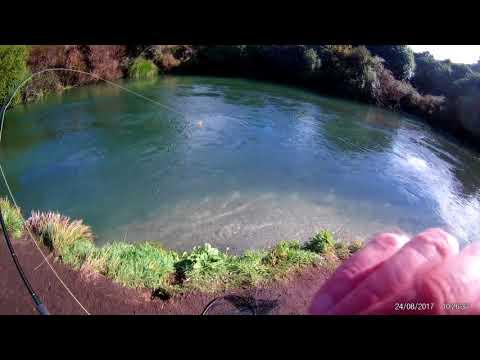 Waitahanui Trout Fishing
