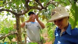 PROUD COFFEE FARMERS OF VIETNAM (ANNI COFFEE)