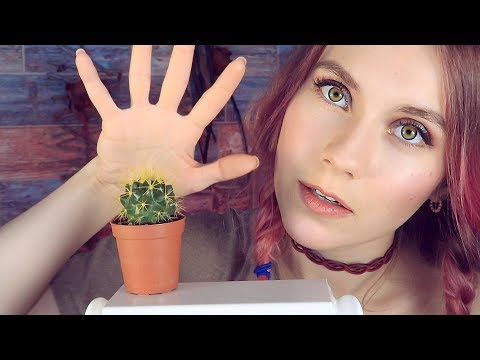 ASMR highly requested 🌵 relaxing CACTUS SOUNDS & ear touching 😱 layered inaudible - SR3D MIC TEST