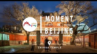 Moment In Beijing—Zhihua Temple