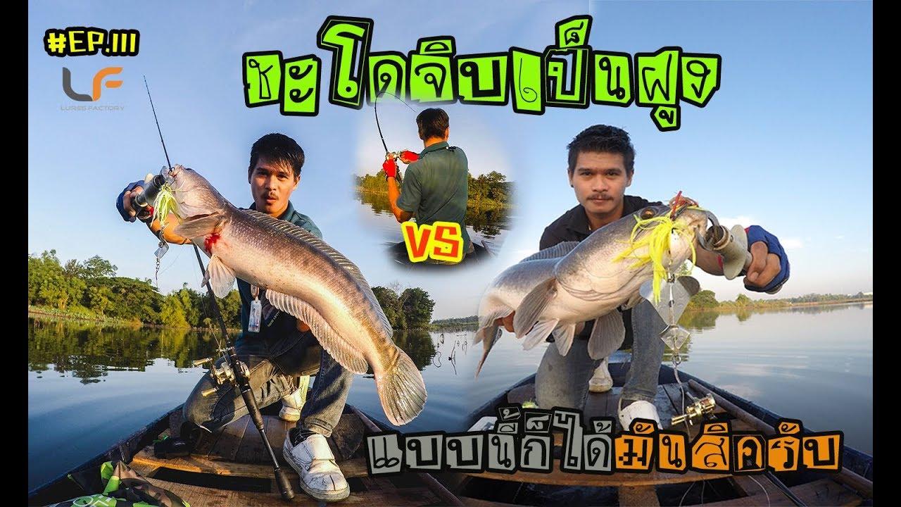 #ตกปลา #ปลาชะโดจิบ (ตอนที่ 111) โคตรเด็ดเจอชะโดขึ้นจิบน้ำเป็นฝูงแบบนี้มันแน่นอน #pong posamton