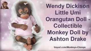 Monkey Baby Doll - Baby Orangutan - Baby Monkeys - Life Like Baby Dolls|Realistic Baby Dolls Youtube