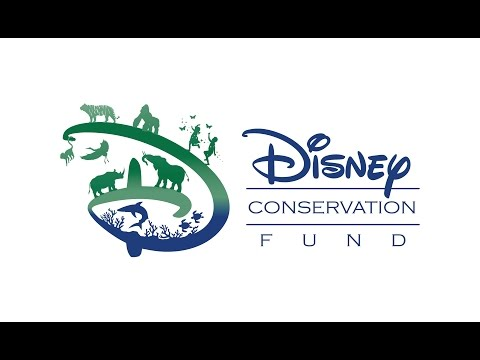 Disney Conservation Fund: Reverse the Decline, Increase the Time (Full Video)