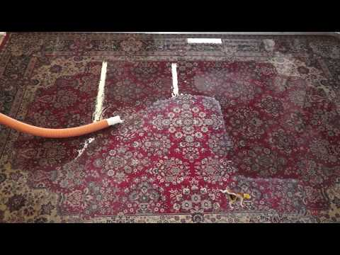 Don't Look at this video-Oriental rug cleaning