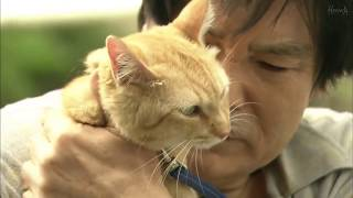 Favorite Scene from Juui Dolittle (獣医ドリトル)
