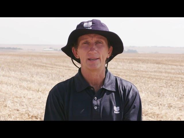 How to take accurate soil samples