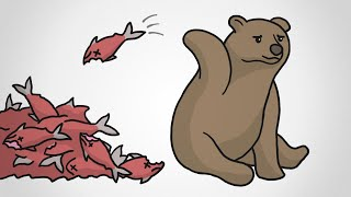 Why These Bears Waste Food