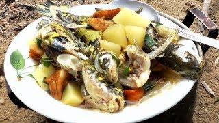 Настоящая рыбацкая УХА на костре, из касатки  с грибами, по рецепту рыбака,#МоиРецепты #Уха