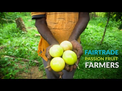 TARGET AGRICULTURE |  Fair Trade: Passion Fruit Famers in Sri Lanka
