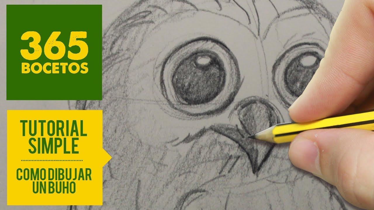 COMO DIBUJAR UN BUHO  how to draw an owl  YouTube