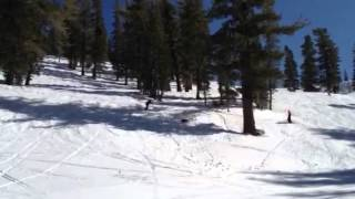 """Avalanche Rescue Dog Finds """"survivor"""" At Heavenly Valley Ca"""