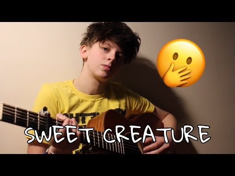 SWEET CREATURE- HARRY STYLES (SHORT COVER)