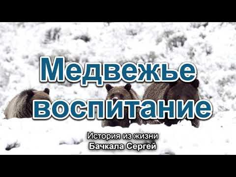 Медвежье воспитание. Бачкала Сергей. Истории из жизни. МСЦ ЕХБ