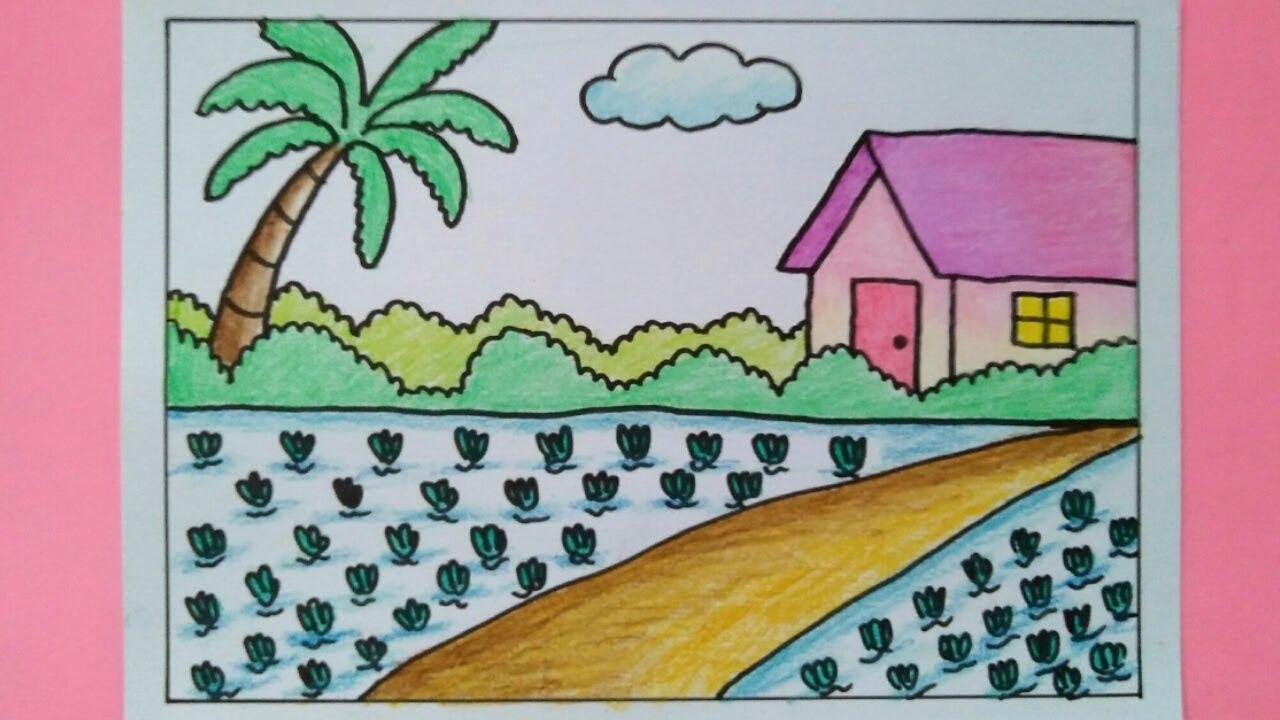 Cara Menggambar Pemandangan Rumah Dan Sawah