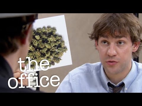 Dwight's Drug Investigation  - The Office US