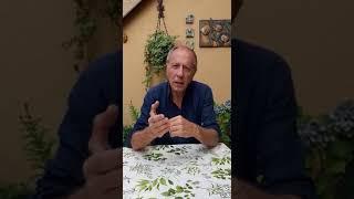 Il direttore De Marinis di Camera Café a Comedy Ring Sanremo 2019