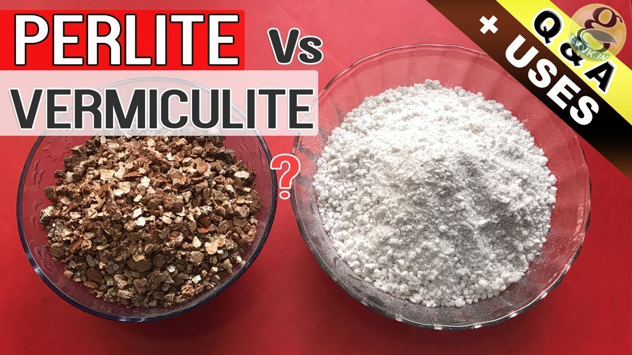 PERLITE vs VERMICULITE IN GARDEN SOIL | Benefits and Difference Between  Perlite and Vermiculite