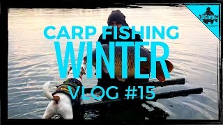 CARP FISHING IN WINTER - THE PARK LAKE VLOG #15 😀