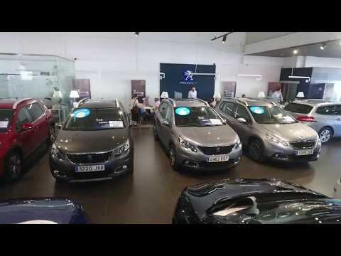 LLega el verano a AMI Peugeot: Feria de liquidación KM 0, seminuevos y mucho más