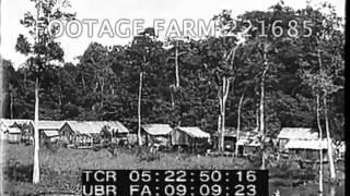 Ford Motor Company & Brazil Sawmill 221685-13