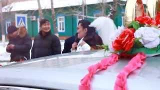Свадьба [ B FREE ]
