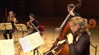 Dvorak: Streichquintett op.77 / 1. Allegro con fuoco