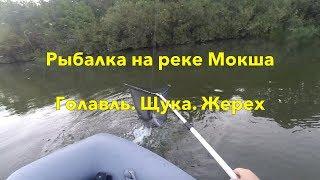 Реальная рыбалка на реке Мокша. Щука, голавль, жерех. Чуть не сломали лодку.