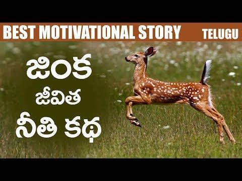 జింక తెల్పిన జీవిత నీతికథ || Best Motivational Story in Telugu || BVM CREATIONS