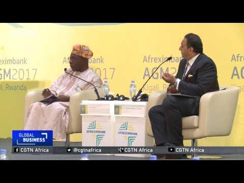 AfreximBank AGM: Delegates debate partnering for Africa's economic transformation