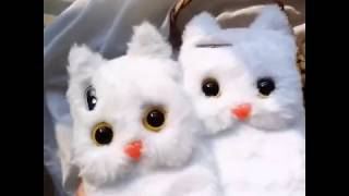 IPHONE X/XR/XS MAX/8/7/6系列 少女風可愛絨毛貓咪手機殼【CAS408】