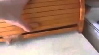 видео Хлебница в дом