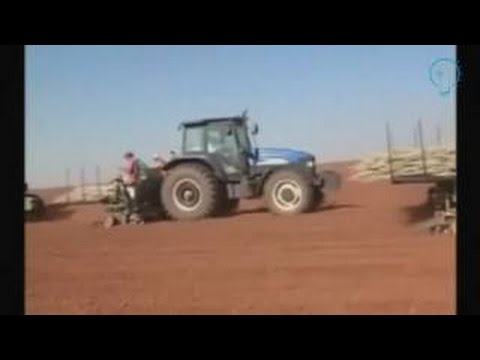 #Amazing cassava cultivation with modern machine and cassava planter machine, amazing agriculture m