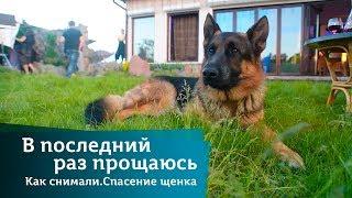 Спасение щенка. Как снимали