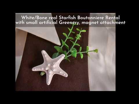 rental-starfish-boutonnieres