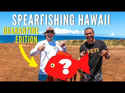 Spearfishing Hawaii Catch And Cook Steamed Fish {Quarantine Edition!}