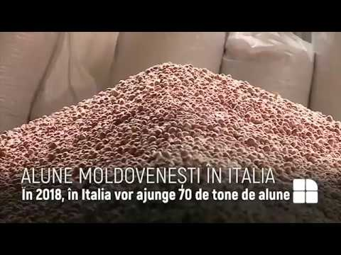 Alune moldovenesti in