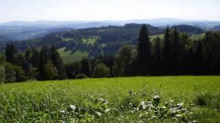 Crossing borders via videos - the Czech Republic