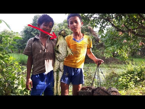 Amazing! Two Children Catch Big Frog Using Bamboo