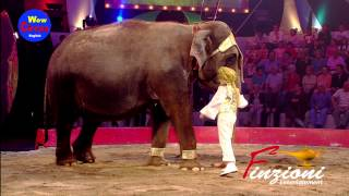 Elephants Kid Renato Bellucci 2