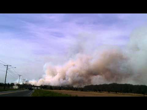 Brush Fire with Live Radio Long Island, NY
