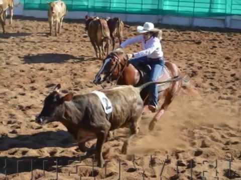 5ª Etapa 2015  Liga Leste Paulista de Team Penning www.rodeioworld.com.br