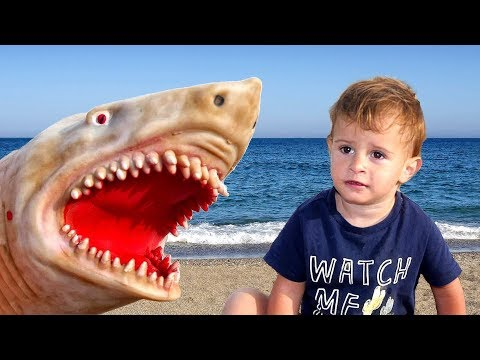 Baby Shark | Kids Songs and Nursery Rhymes | Animal Songs from LETSGOMARTIN