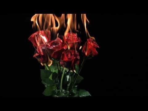 Halsey - Bad At Love {hour version}